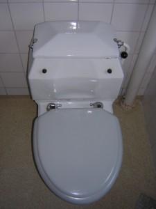 den gamla toaletten med sidospolning (rätt så söt)