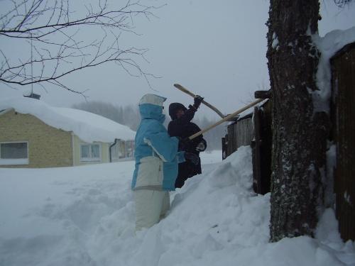 Inte för att mitt vedskjul är något att bevara egentligen, men ser bättre ut med det stående än en hög med brädor på tomten för att snön knäckt taket. Så för att spara in på den huvudvärken så skottade vi taket